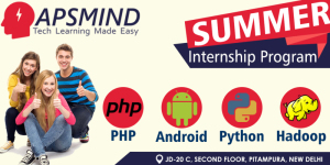 APSMIND Technology Pvt. Ltd.