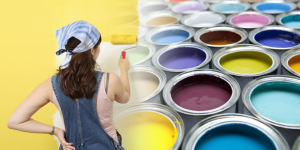 Rely Paints Private Limited
